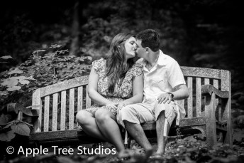 Apple Tree Studios-4