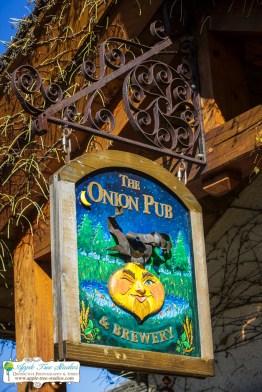 Onion Pub Brewery Lake barrington IL Wedding 007