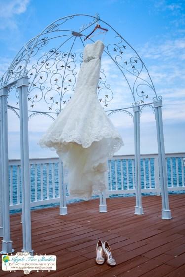 Apple Tree Studios Chicago Wedding Photographer-1