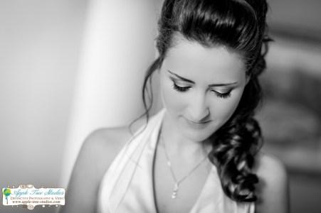 Apple Tree Studios Chicago Wedding Photographer-30