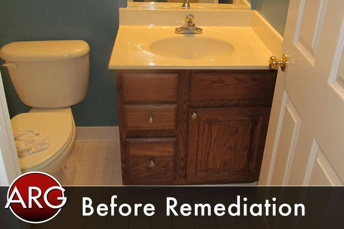 virginia mold remediation