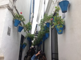 Blue flower pots are a common decoration in Cordoba