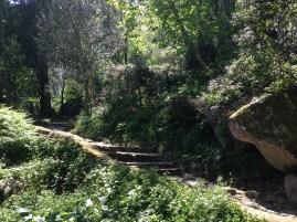 Hike up to Moorish Castle