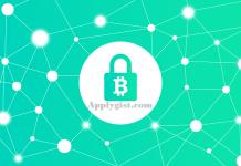 Bitcoin Record Price Hits $7000