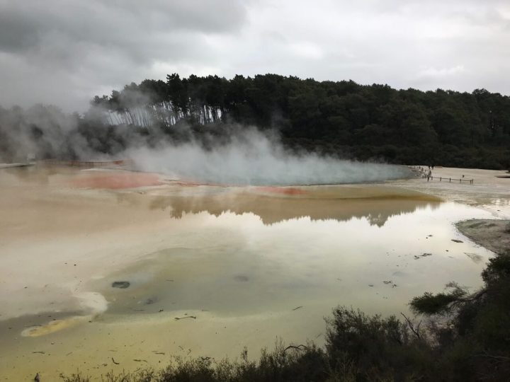 Rotorua New Zealand Wai O Tapo Steaming Pool