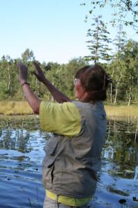 Jaktapportering - dirigering vidare ut med handtecken