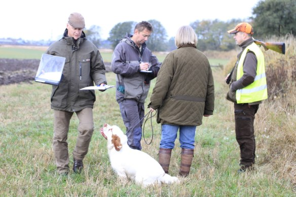 Steward Jan Olofsson (to the left) at work before the next dog enters
