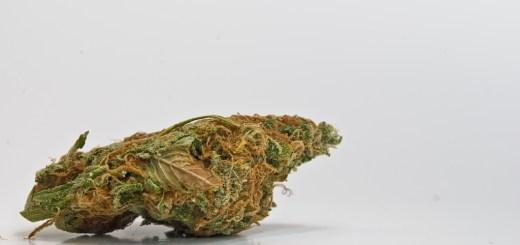 Marijuana and Appraising