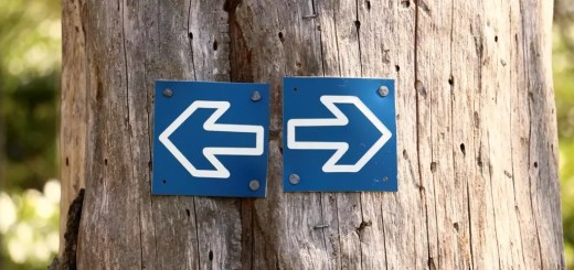 Indemnity Clauses... Either Sign, or Get Put Out to Pasture - Appraisers Blogs