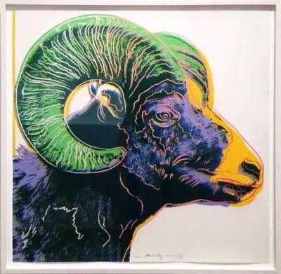 Big Horn Ram Fine Art Print