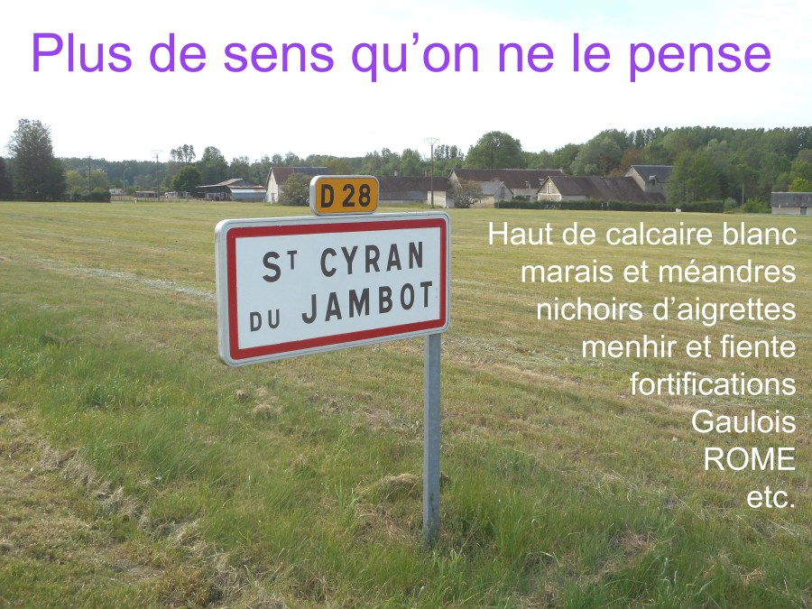 Saint-Cyran-du-Jambot (36) CarteNetPostale