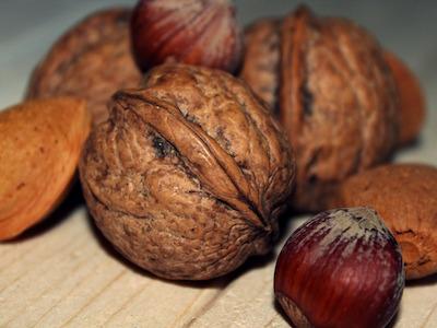 noix graines noisettes minéraux oligo-éléments