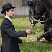comment vivre comme un aristocrate aristocratie aristocrate aristocrates château domaine chasse à cour polo cheval équitaion noble noblesse fiançailles mariage valeurs