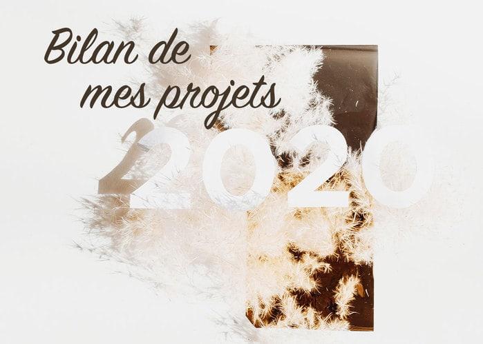 Read more about the article Bilan de mes Projets 2020
