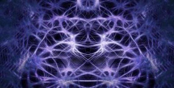 cerveau apprendre