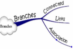 mind mapping branches et mots