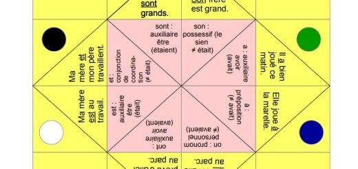 cocotte français homophones grammaticaux