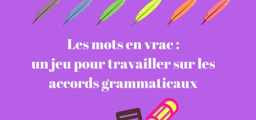 Les mots en vrac _ un jeu pour travailler sur les accords grammaticaux