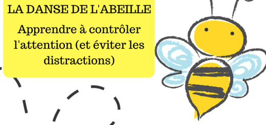 abeille regard concentration