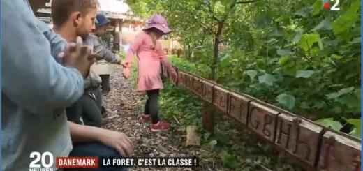 école dans la nature