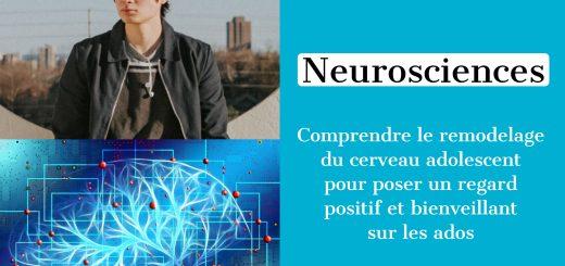 neurosciences remodelage cerveau adolescent