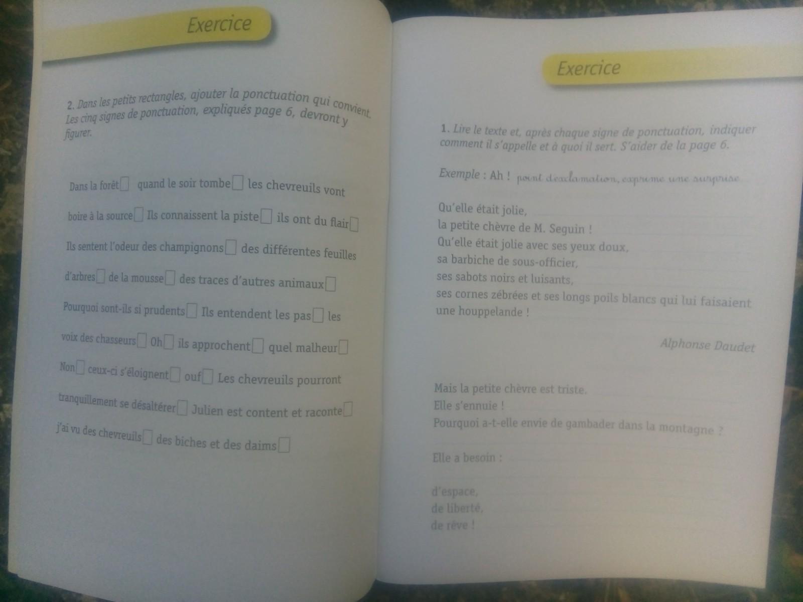 cahier construire rédaction primaire dys