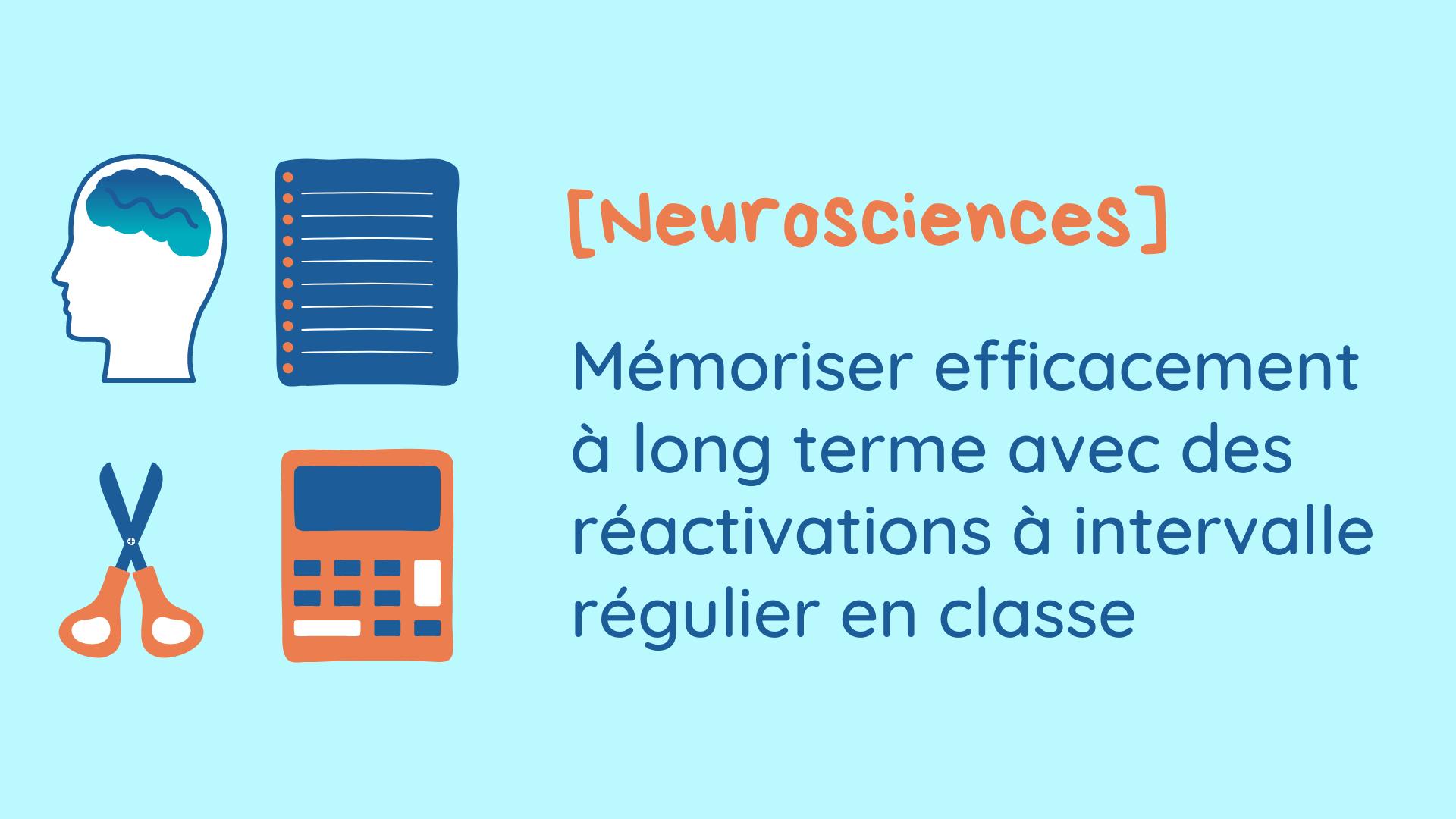 neurosciences mémoire long terme