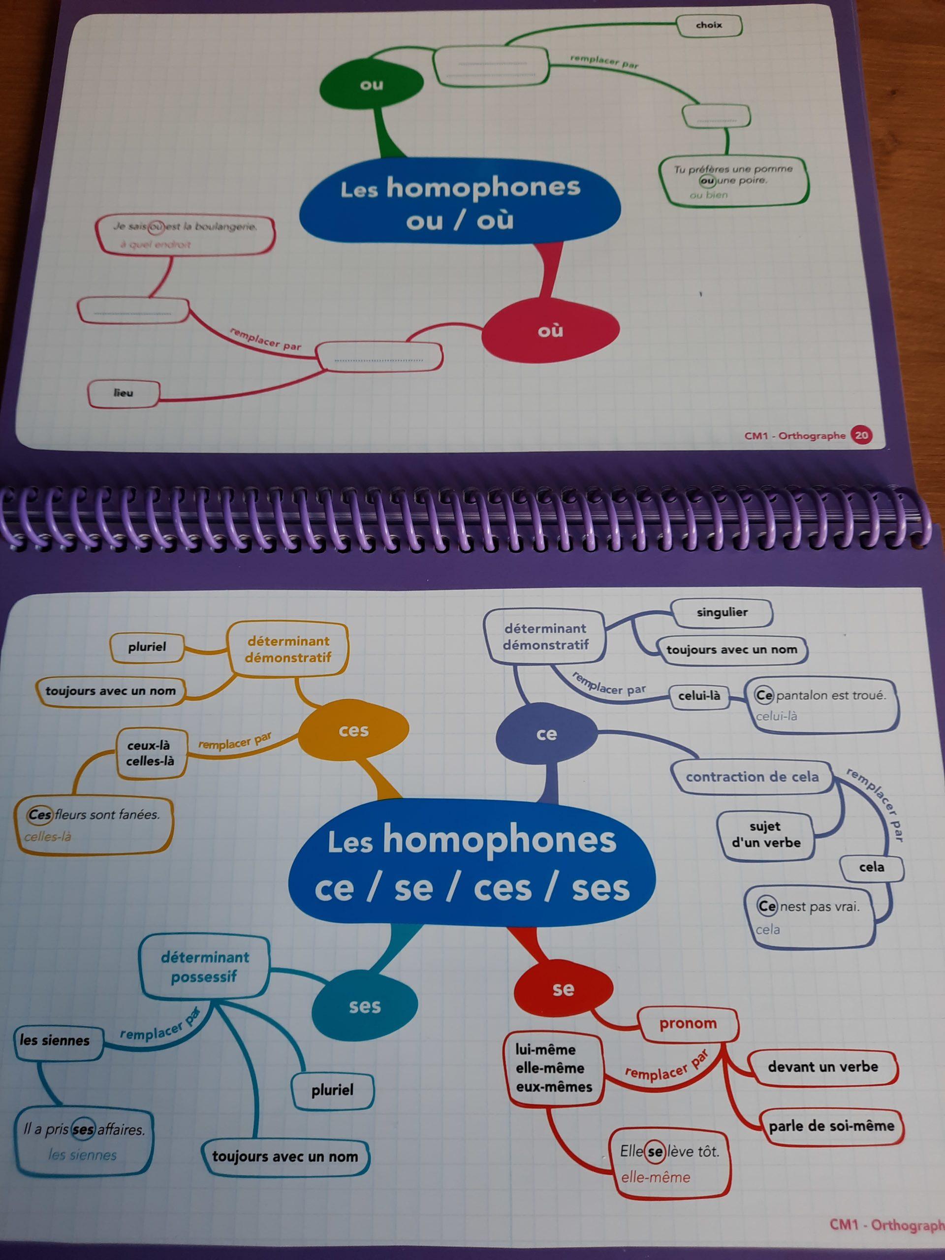 livre cartes mentales francais cm1