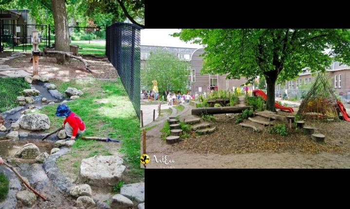 cour d'école espaces verts