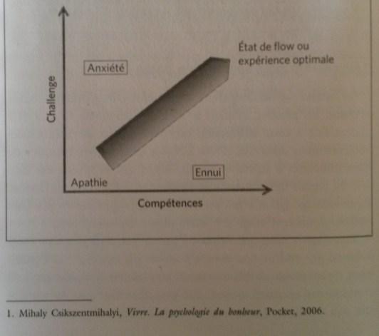 flow psychologie positive