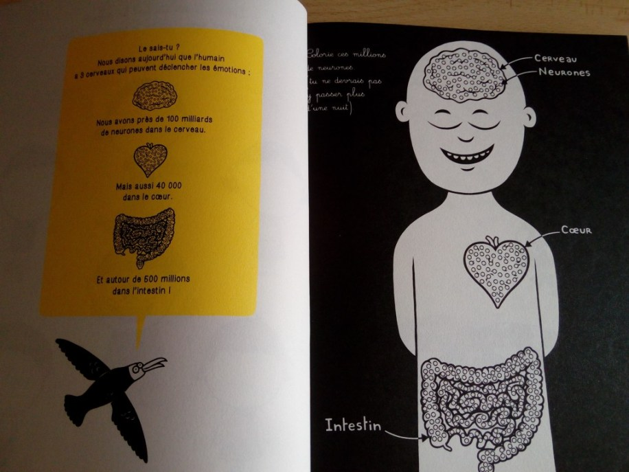 cahier filliozat sur les émotions