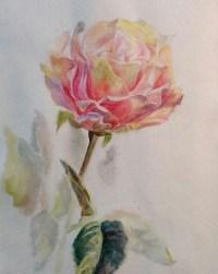 Une rose. Peinture de mon élève Anna Nicole. Aquarelle. Techniques de peinture