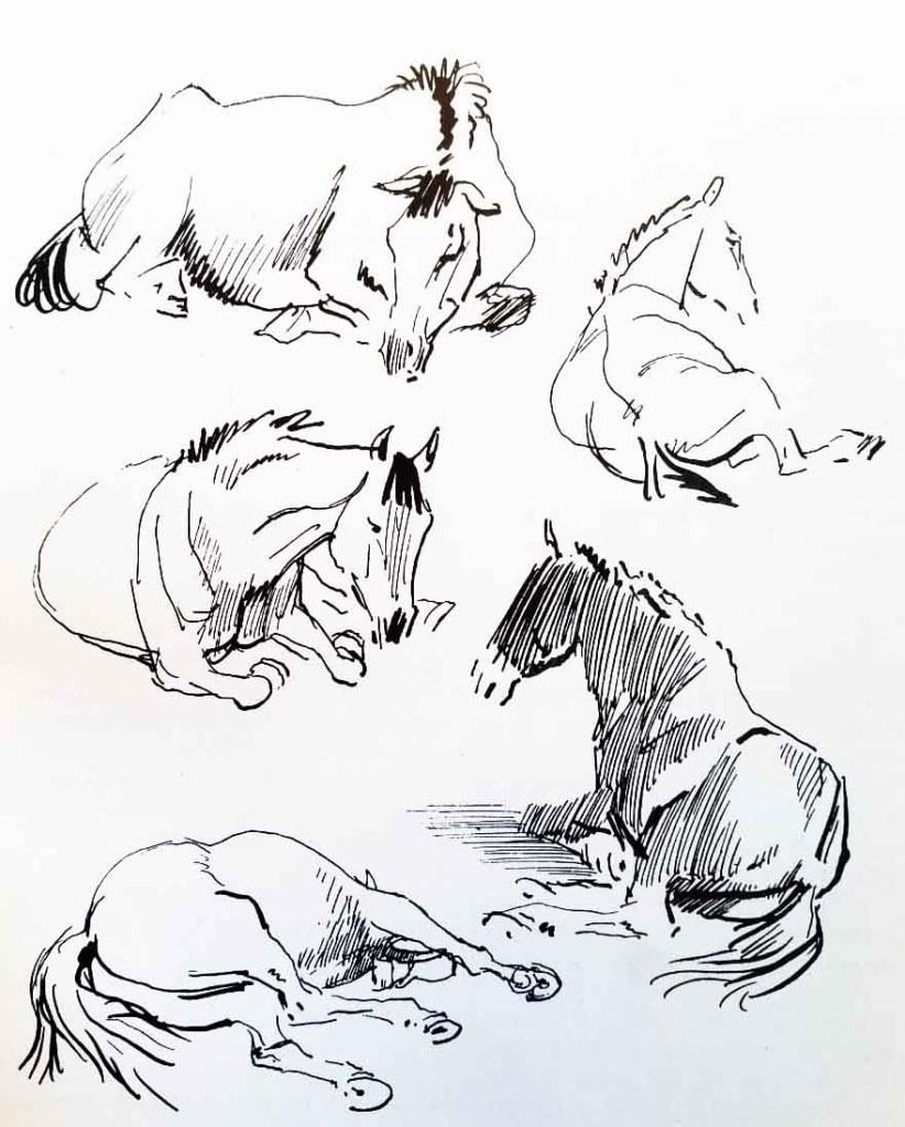 Comment dessiner un cheval. Croquis rapides.