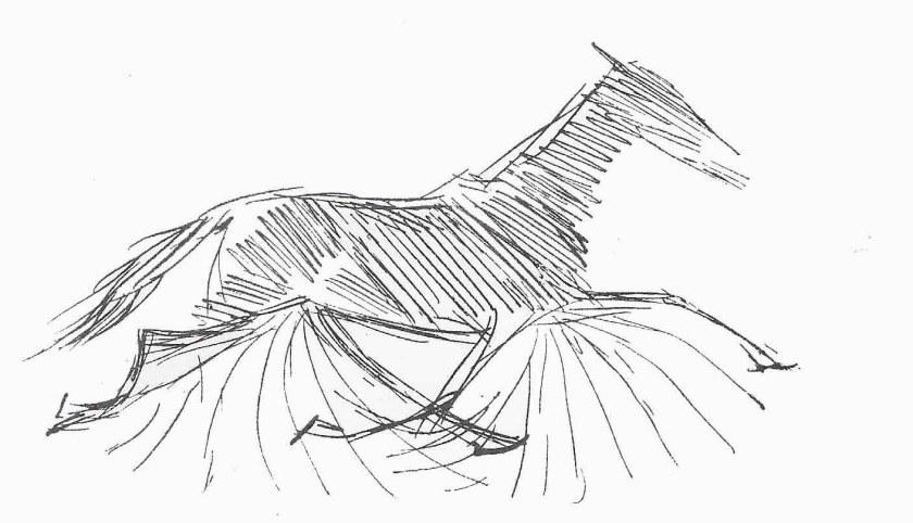 Schéma du trot du cheval.