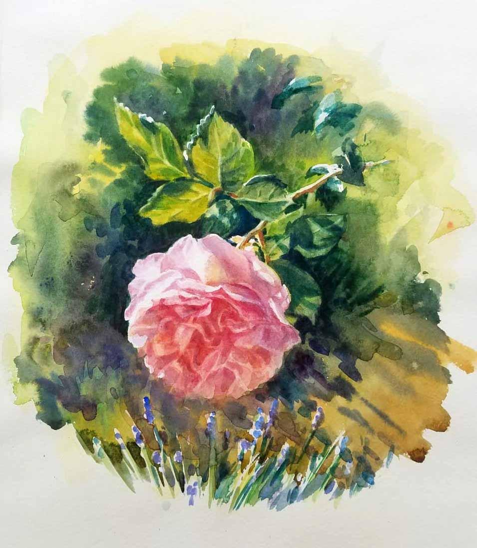Comment peindre une rose à l'aquarelle.