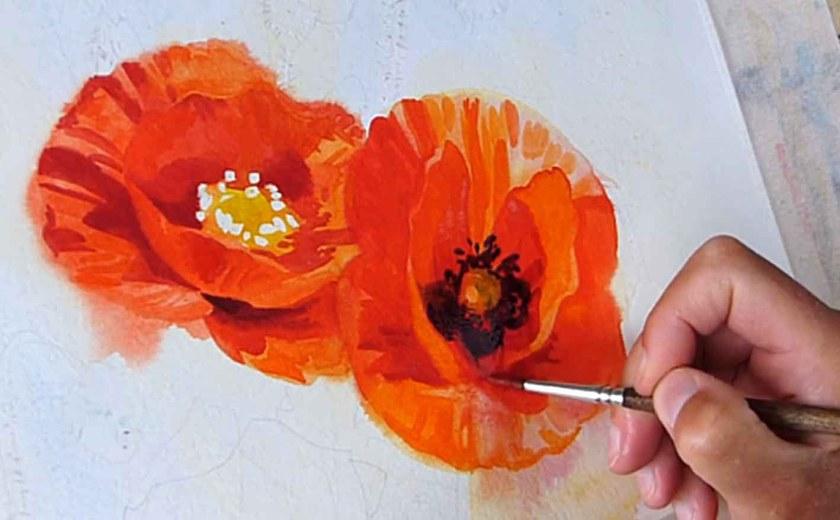 Comment peindre des coquelicots à l'aquarelle. Processus du travail
