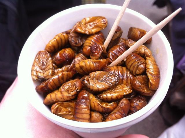 aliment coréen excentrique - chrysamode de vers à soie