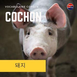 2-cochon