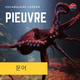 3-pieuvre