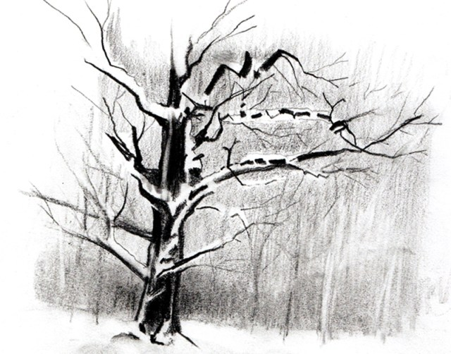 comment dessiner un arbre sous la neige apprenez a. Black Bedroom Furniture Sets. Home Design Ideas
