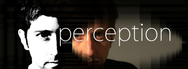 perception2