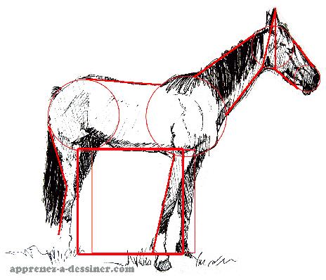 Comment dessiner un cheval part 1 apprenez a - Dessiner un cheval facilement ...