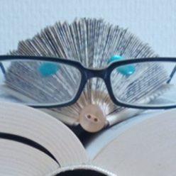 Apprentis Sages de la lecture