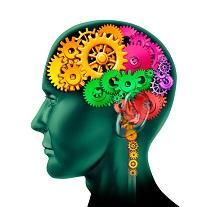 cerveau rouages petit - Vouloir éliminer son stress est-il une source de ..... stress?