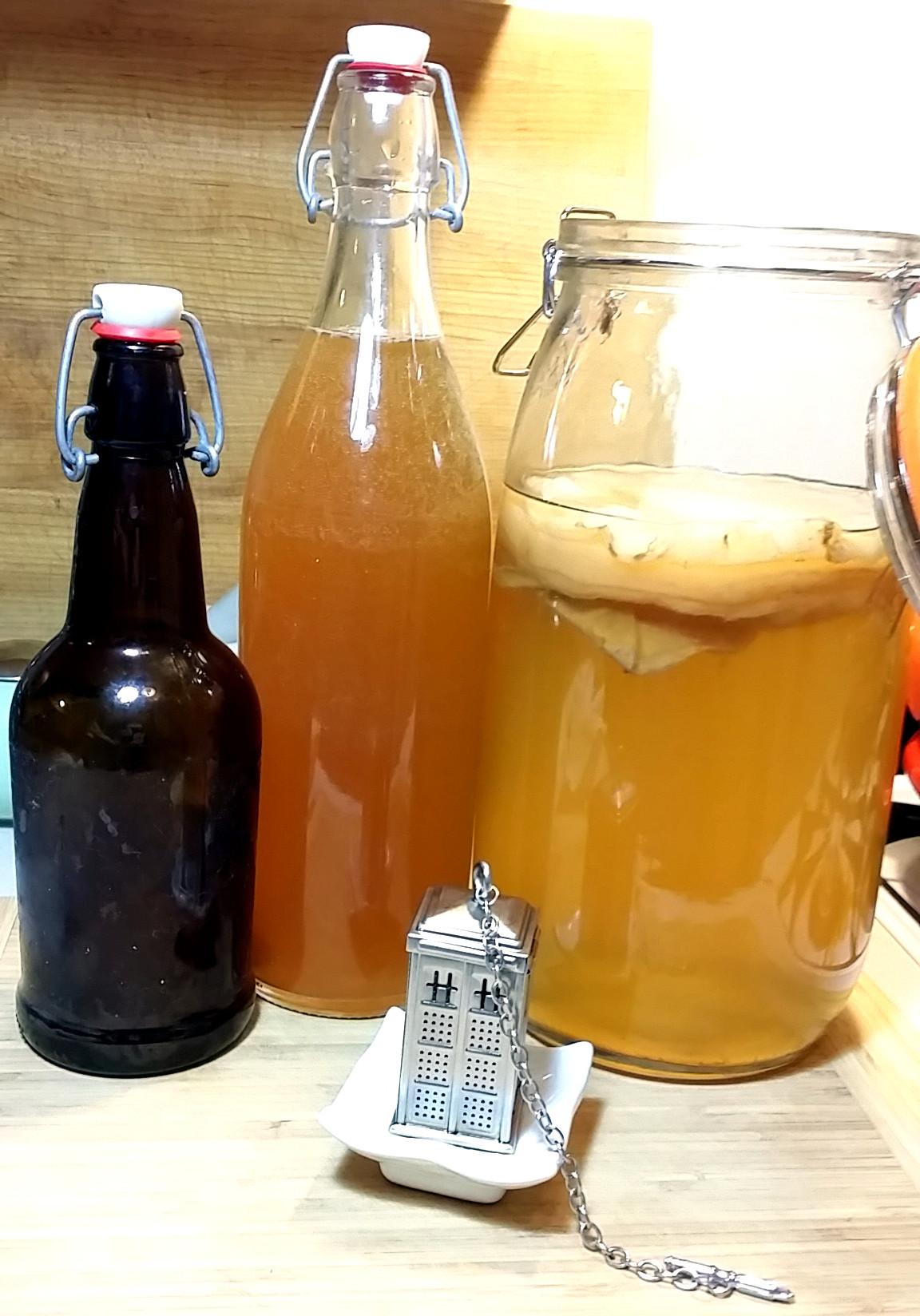 Kombucha Lesson Plan And A Free Brew Log