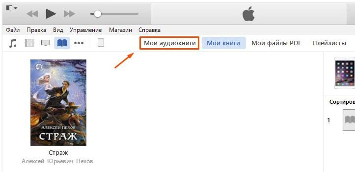 Скачивание в формате m4b для приложения iBook