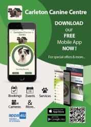 App4U flyer for Carelton Canine Centre