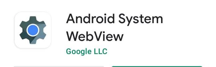 Fix Google App Crashing