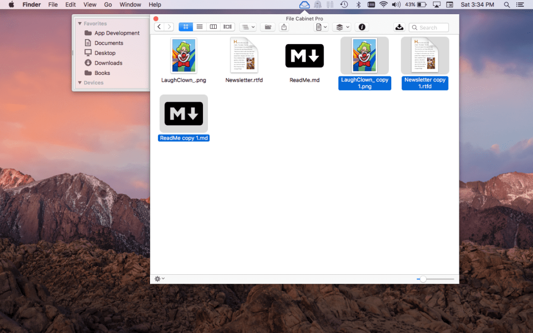File Cabinet Pro Mac app screenshot showing duplicated files selected.
