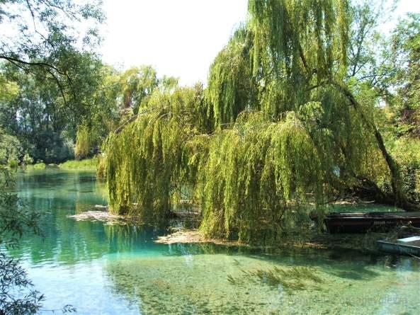 Il lago di posta fibreno una riserva naturale in for Lago tavolini
